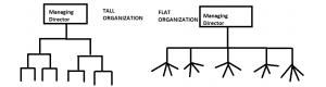 Tall vs Flat Organizations