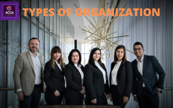 TYPES OF ORGANIZATION- accacoach.com